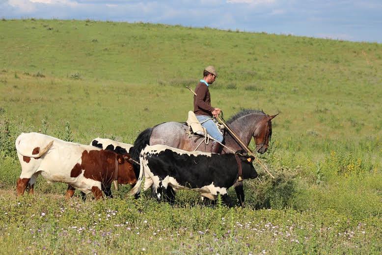 """""""El trato directo con los ganaderos siempre es muy importante, pero somos conscientes que dada la situación del covid no es posible"""""""