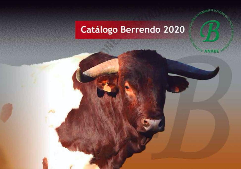 ANABE publica el nuevo catálogo de Berrendo 2020